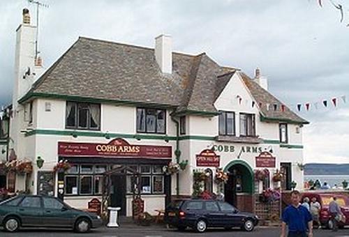 Cobb Arms