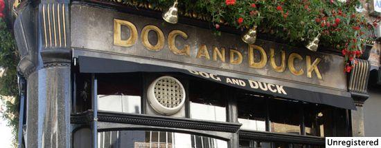 Dog & Duck