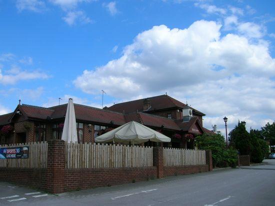 Festival Inn