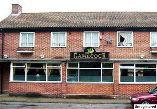 Gamecock