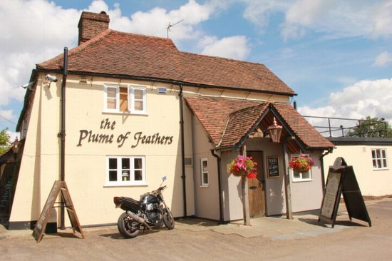 Plume of Feathers